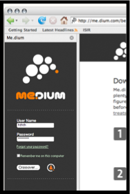 Medium Login Window